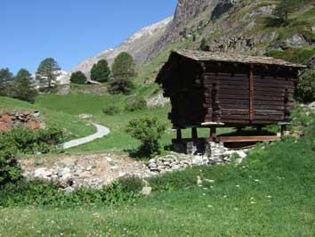 Bild Almweg